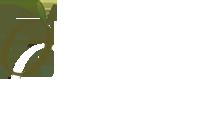 Olyvenbosch
